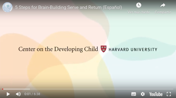 5 puntos clave para el desarrollo del cerebro infantil a través del juego.